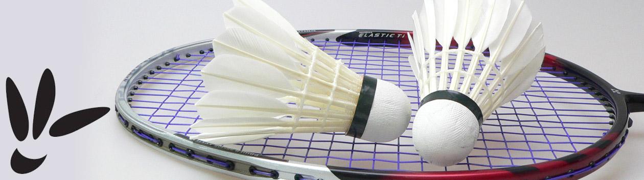 SVE-Mendig Badminton
